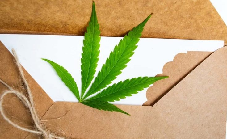 MARIJUANA EDIBLES: EFFECTS AND SIDE EFFECTS